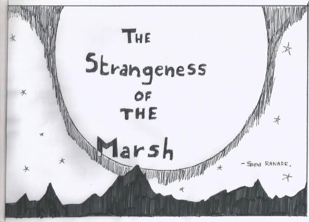The Marsh start